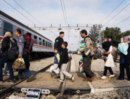 Diáspora síria
