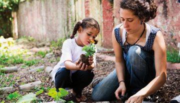Escolas e projetos buscam trabalhar a educação socioambiental de forma holística