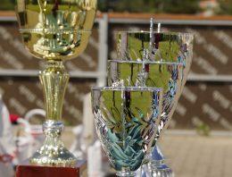 Vencedores de prêmio sobre inovação na formação docente são anunciados