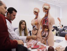 Aula de anatomia