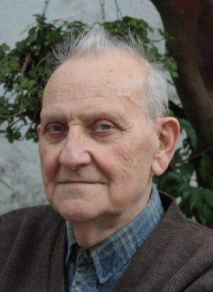 Resultado de imagem para István Mészáros