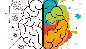 Educação, biologia e cultura