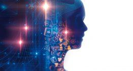 Sobre cérebros e computadores