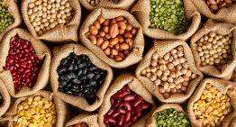 Proteínas vegetais entram no cardápio das escolas municipais de SP
