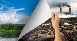 Aulas gratuitas de bioinovação visam enxergar soluções para o planeta