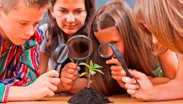 Conheça dois guias gratuitos para educadores inovarem nas práticas de ensino e aprendizagem