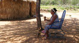 Trajetória de anciãs indígenas é tema de livro escrito também por indígenas