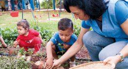 Escolas de educação infantil rurais sofrem com falta de políticas públicas adequadas