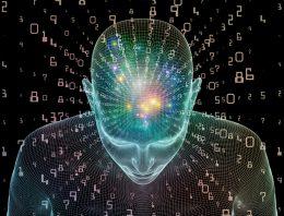 Neuroaprendizagem: curso ajuda a entender como o cérebro aprende