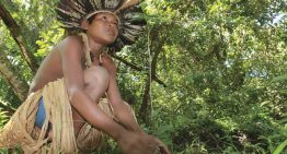 Unicef lança podcast infantil sobre a cultura amazônica